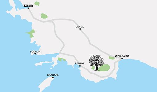 Herkunftskarte | Der Olivenbauer